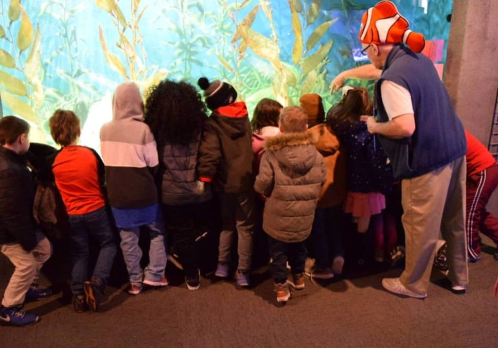Guided School Group Tours at Jenkinson's Aquarium